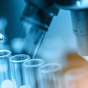 2 Top Biotech Stocks to Buy Right Now